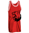 Voodoo Viscious - Custom Heat Pressed Old School Basketball Jersey - 1426 - 14262049 bcf73c2bcee62762016221728630