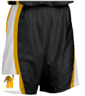 NYAA Hoops Shorts - Youth Basketball Shorts - Shadow Series - Teamwork Athletic - 4410 - 44102033 - Custom Heat Pressed cf8474423d1b6112016153713749