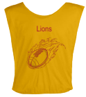 LIONS DISCONTINUED Youth Football Scrimmage Vest - Teamwork Athletic - 2361