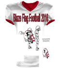 GREEN COUNTY FAMILY YMCA BLAZE FLAG FOOTBALL 2016 - Custom Screen Printed Reversible Football Jersey Adult -1357 - 13572042 fc21aadbb3092062016124939590