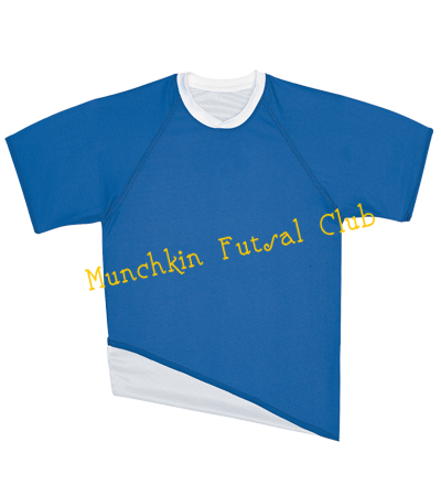 c1bf14642 MUNCHKIN FUTSAL CLUB - Custom Heat Pressed Youth Single Layer Reversible Soccer  Jersey - 22421 - 224212031 363d9edb189551220142125724