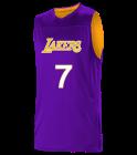 Tx-Lakers Logan Los Angeles Lakers Youth Reversible Basketball Jerseys - A105LY-LAKERS