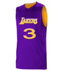 3iverson3 Logan Los Angeles Lakers Youth Reversible Basketball Jerseys - A105LY-LAKERS