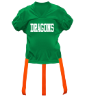 DRAGONS DISCONTINUED Adult Official Flag Football Jersey - 1358