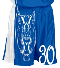 Boys-and-Girls-Home-and-Away DISCONTINUED Adult Dazzle Basketball Shorts - 11