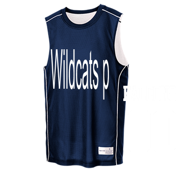 95e9decacec Wildcats - Custom Heat Pressed Youth Team Reversible Basketball Jerseys -  YT555 2D1A02A6686F