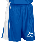 25 DISCONTINUED Adult Dazzle Basketball Shorts - 11