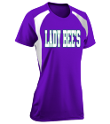 Lady Bee's - Custom Screen Printed Womens Softball Tee Torrent Tech - 1043 BD2B450E081C