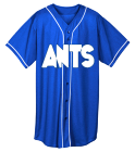 Ants - Custom Heat Pressed Youth Full Button Wicking Mesh Jersey  - 594 662A0CC7E881