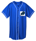 13 Baseball - Custom Heat Pressed Youth Full Button Wicking Mesh Jersey  - 594 B4F4A8AA1942