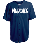 MUDCATS-DOUCHE-Mudcats-Douche-2-MUDCATS-DOUCHE-2 - Custom Heat Pressed Youth Speedster Baseball Jersey - 1765B 596CA4E0486F