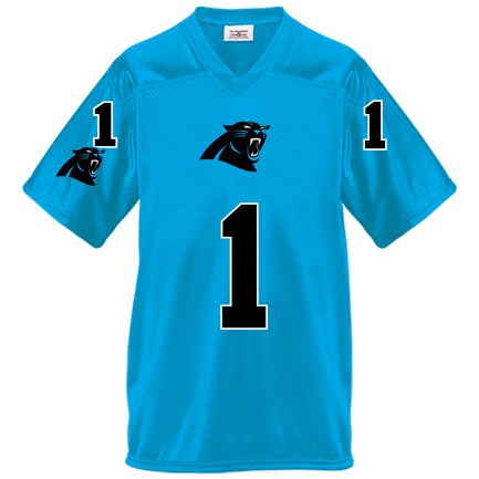 newest 6a399 6bd22 Carolina Panthers-Connor's Team - Custom Heat Pressed Youth Overtime  Football Jersey - 1302