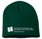 Archny Hat - Custom Screen Printed Neon Beanie - SP08 02E4931A89FB