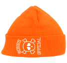 77 - Custom Embroidered Neon Beanie - 813 C0CBCF38EDFB